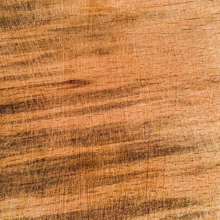 Legno fossile - Fossil wood